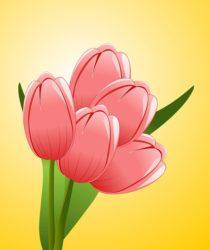 Blumen und Floristik